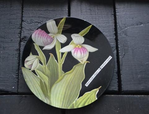 Decoupaged Glass Tray from InstituDecorativeArts on Etsy
