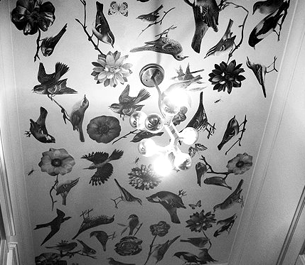 Yes, that's a decoupaged ceiling.  From Apartment Therapy.